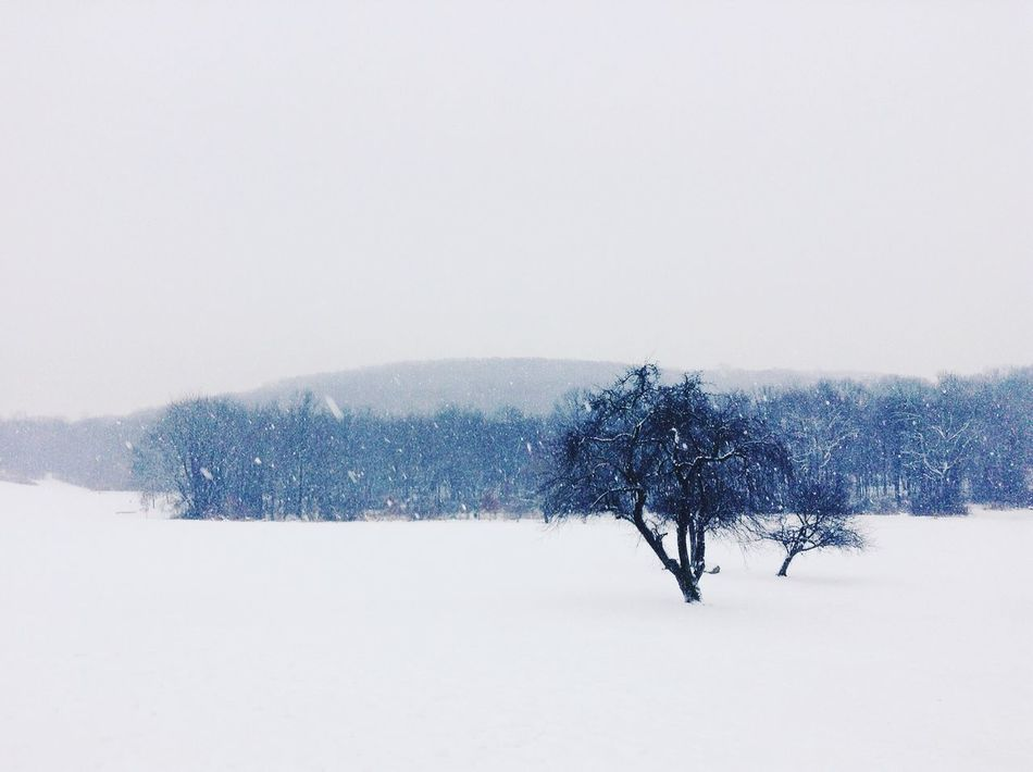 I L O V E S N O W ! ! ! Winter Snow Negative Space