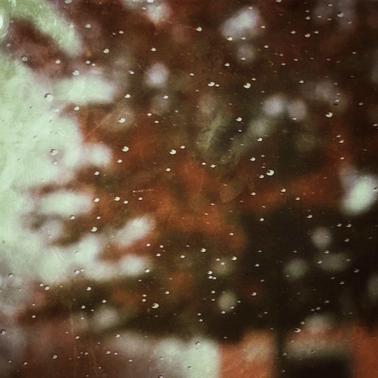 Autumn Blur Drivebyphotography No People Outdoors Rain Raindrops Through The Window Tree