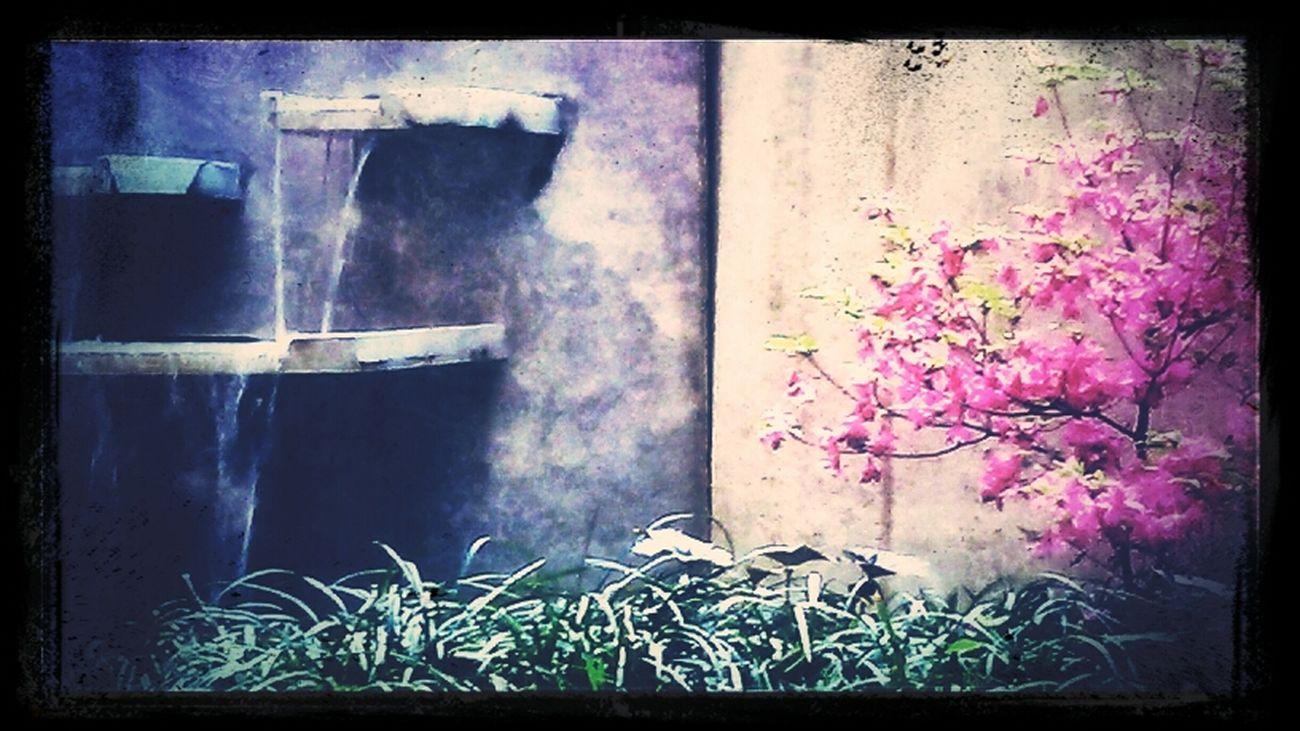 Created atmosphere. Fountain Fun