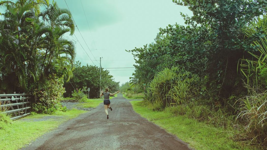 Sommergefühle Walking Day Real People The Way Forward Tree One Person Growth Nature Road Outdoors Full Length Plant Grass Beauty In Nature Sky Hawaii Hilo