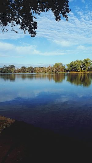 Nature Lake Lodi California Fishing