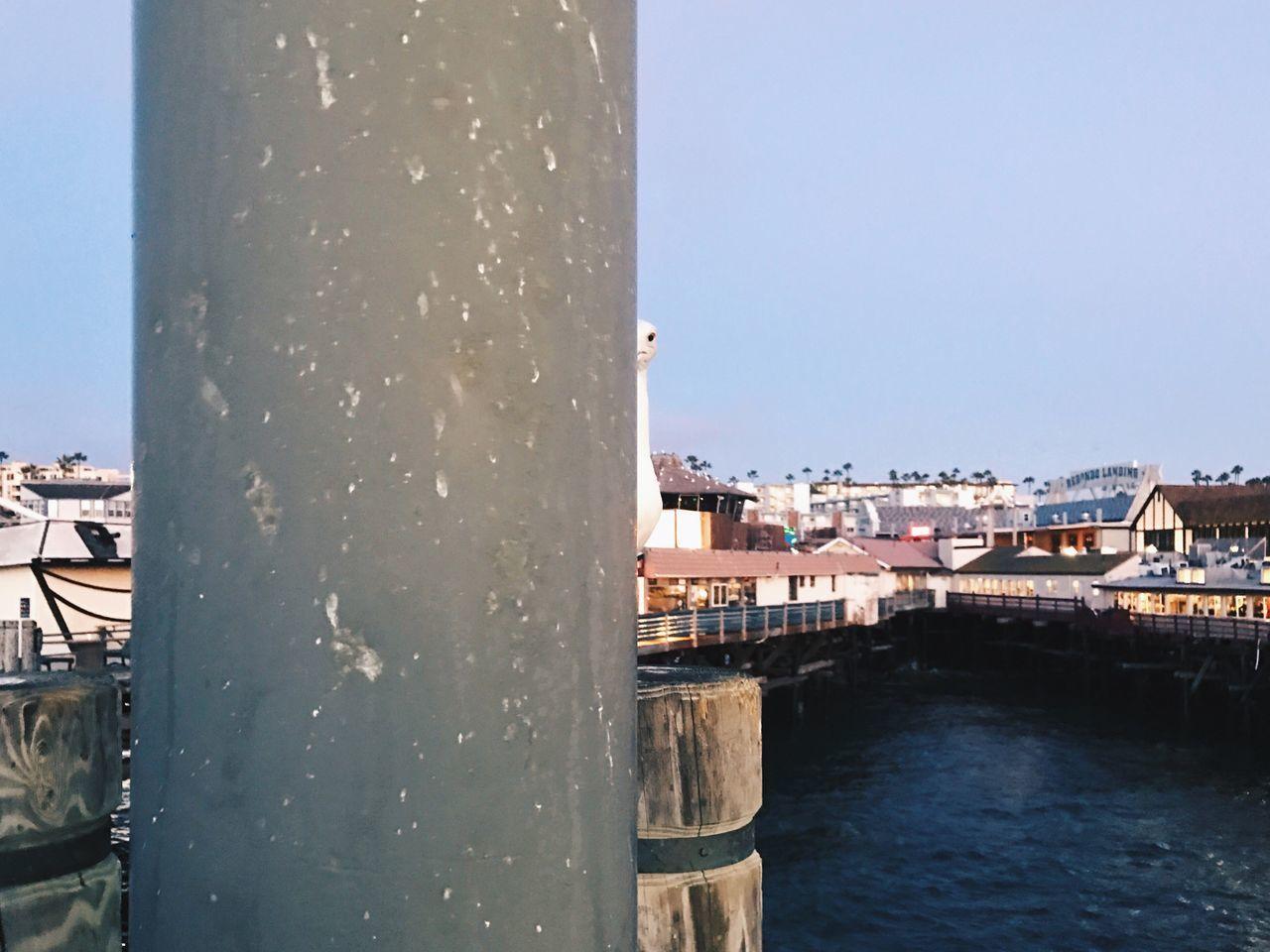 City At Waterfront