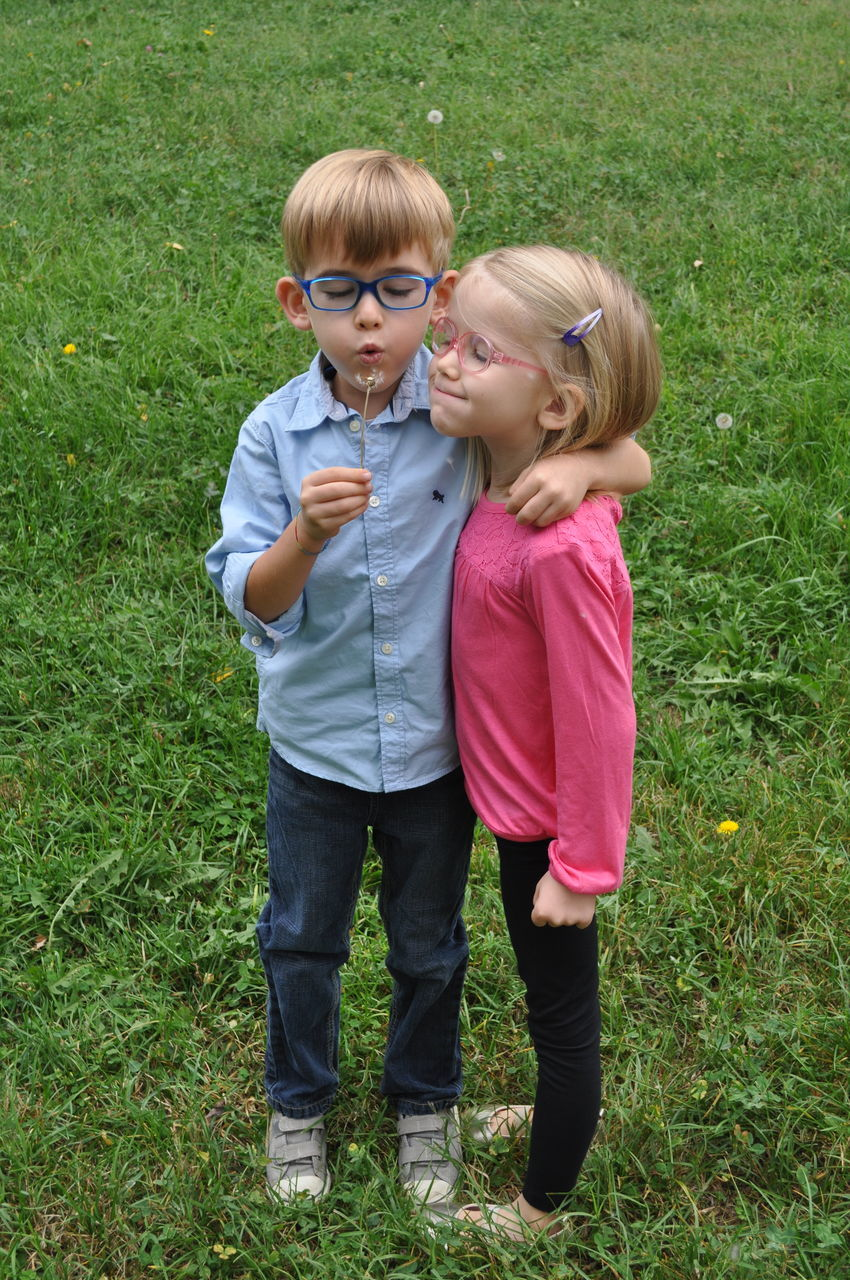 Siblings With Arm Around Blowing Dandelion While Standing On Grass