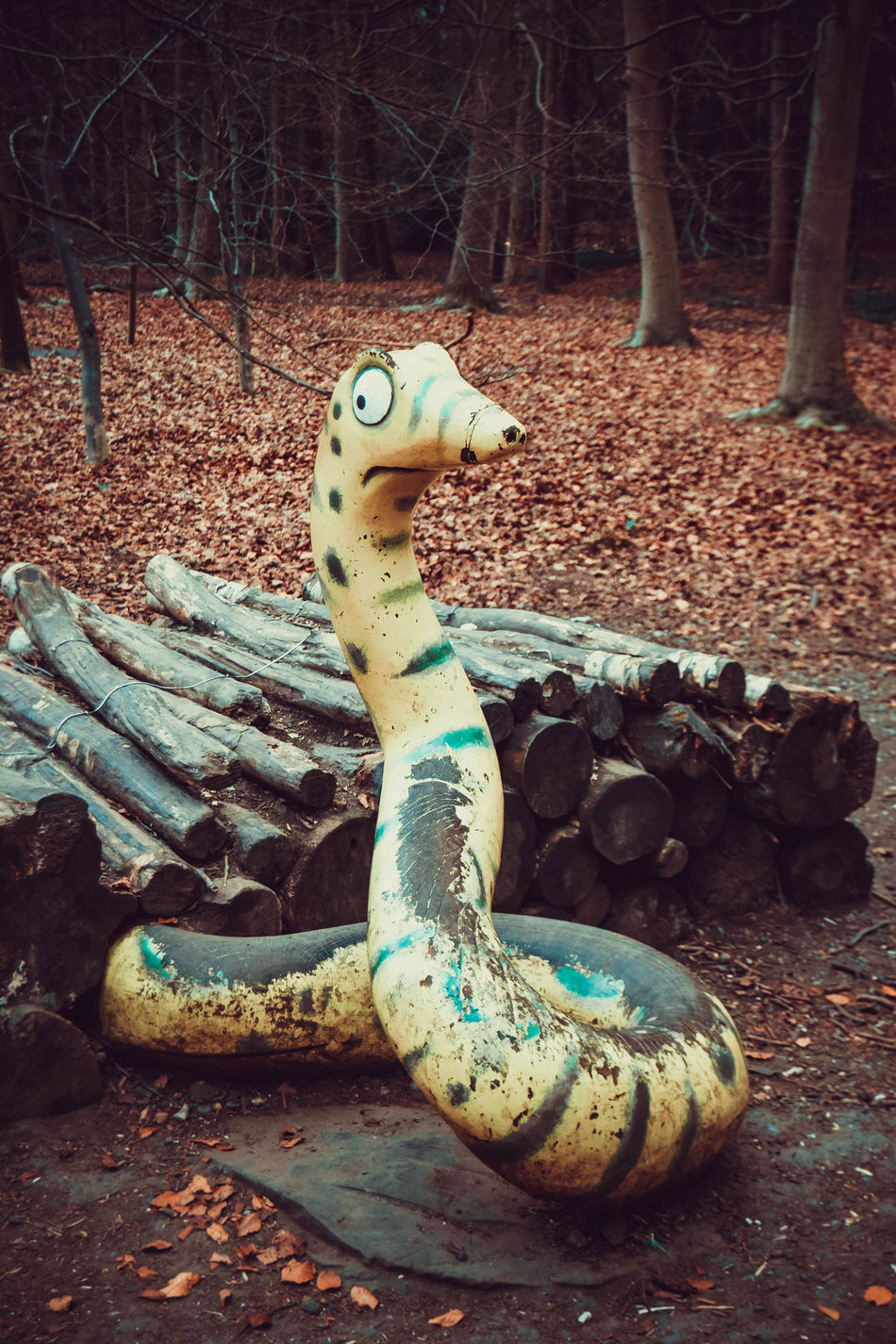 Day Forest Forest Walk Gruffalo Gruffalo Trail Logs Lots Of Leaves Nature No People Outdoors Snake Snake Sculpture Trees Wooden Snake In Front Of Log Pile WoodLand
