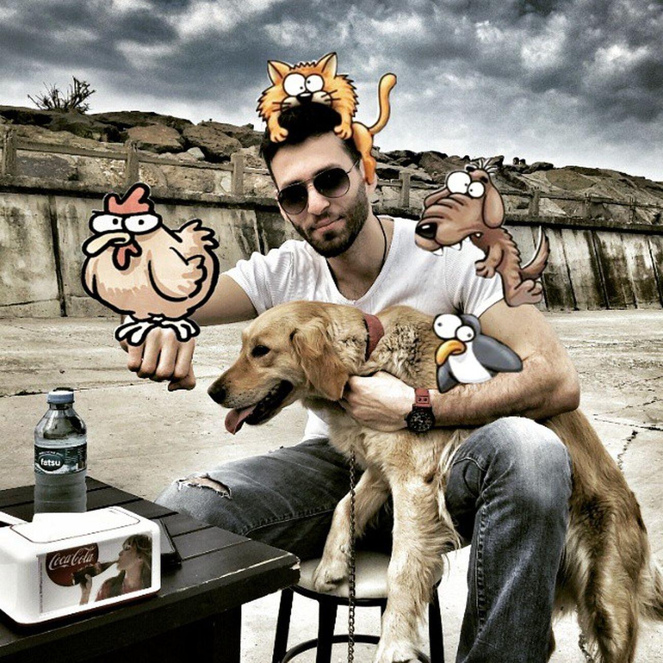 hayvan sevgisini sizden öğrenecek değiliz 😂😎🐧🐔🐕🐈 Penguen Penguendergi Erdilyasaroglu Trabzon Ganita Ktu Sahil