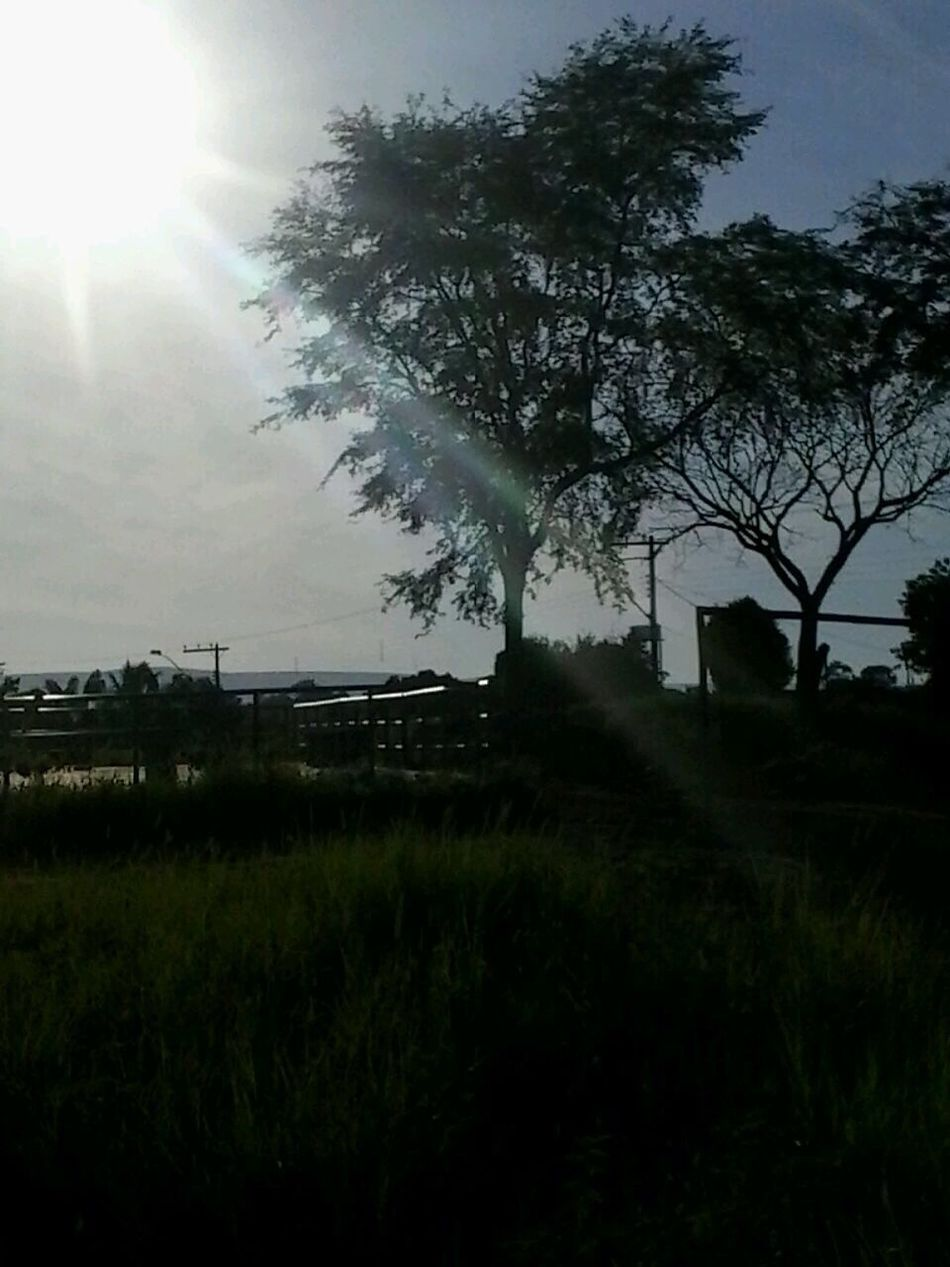 Entre ima estrela e um vagalume ,o sol se põe !!:):)