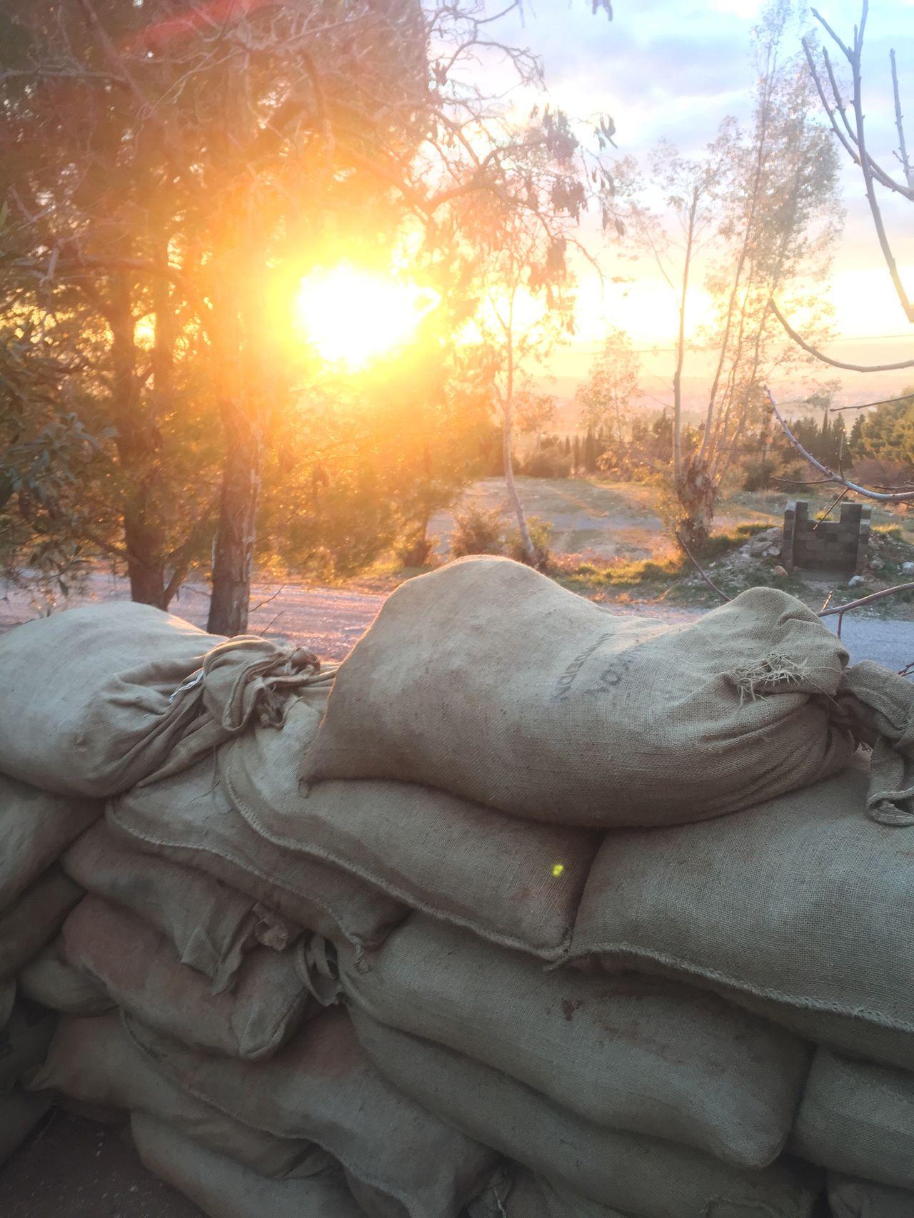 Sunlight Sunset No People Army