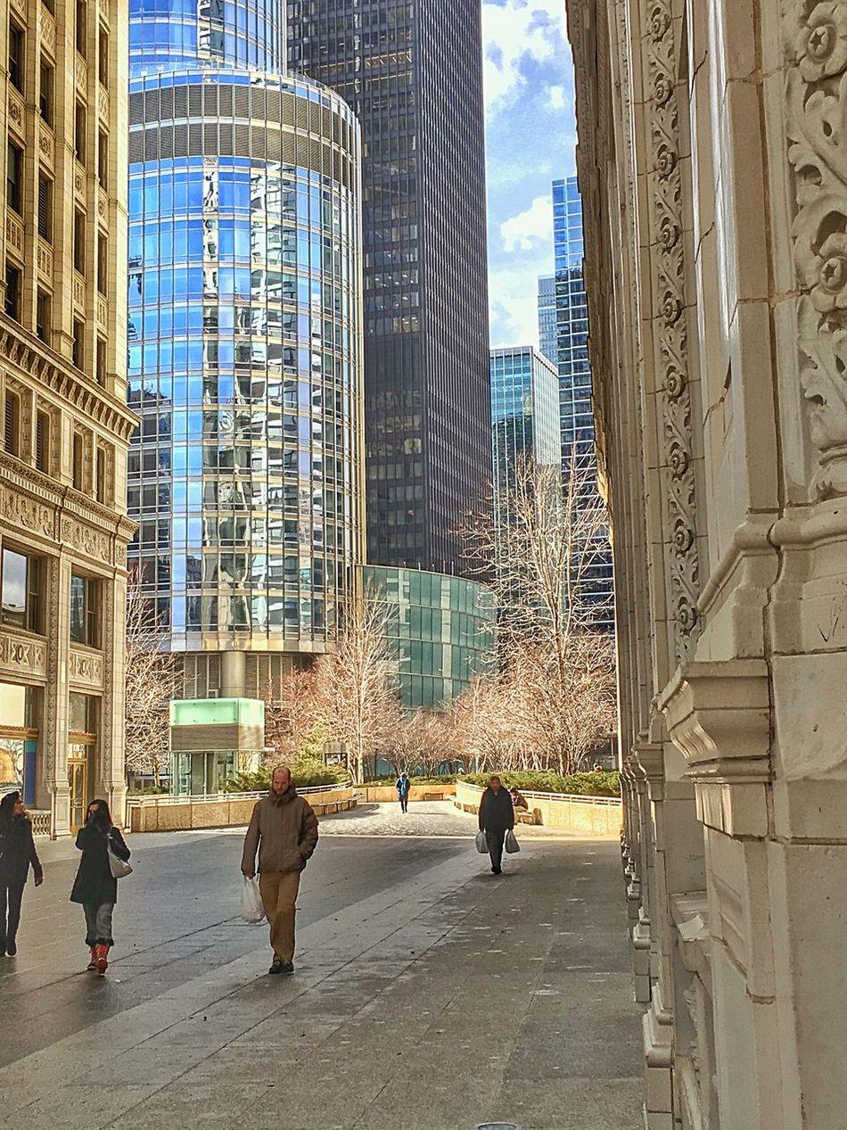 Chicago Chicago Loop Chicago Architecture Architecture Windy City Love Chicago Chicago Skyline Wrigleybuilding Trump Tower Chicagoriverwalk Juxtaposition Sunny Day EyeEm Best Shots Chicago Street Scene
