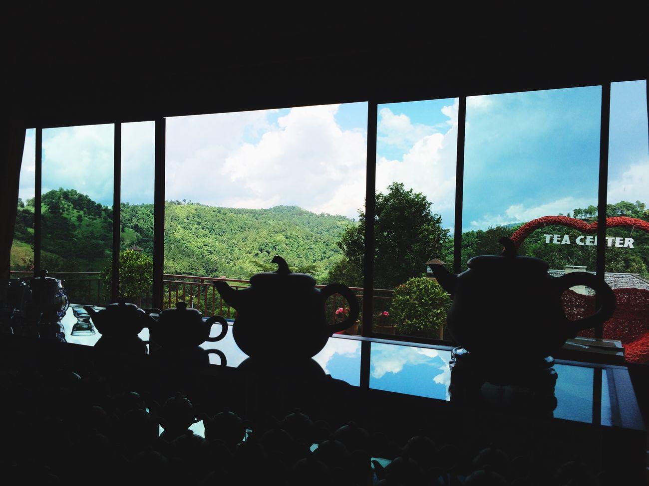 ไร่ชา 101 (Tea 101 Platation) Doi Mae Salong Chiang Rai. Sky Thailand_allshots Travel Photography Thailand IPhoneography EyeEm Best Shots Iphonephotography Tea Tea Time Chiang Rai