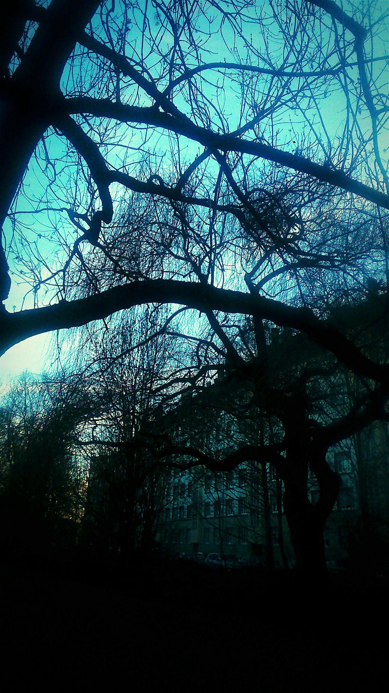 Dans un parc...
