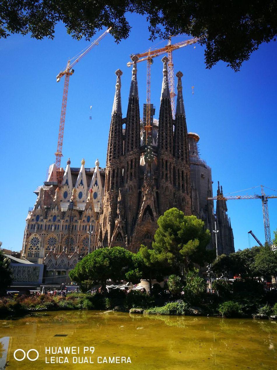 Sculpture Architecture Barcelona Statue City Tree No People Travel Destinations Outdoors Sky Water Day Sagradafamilia