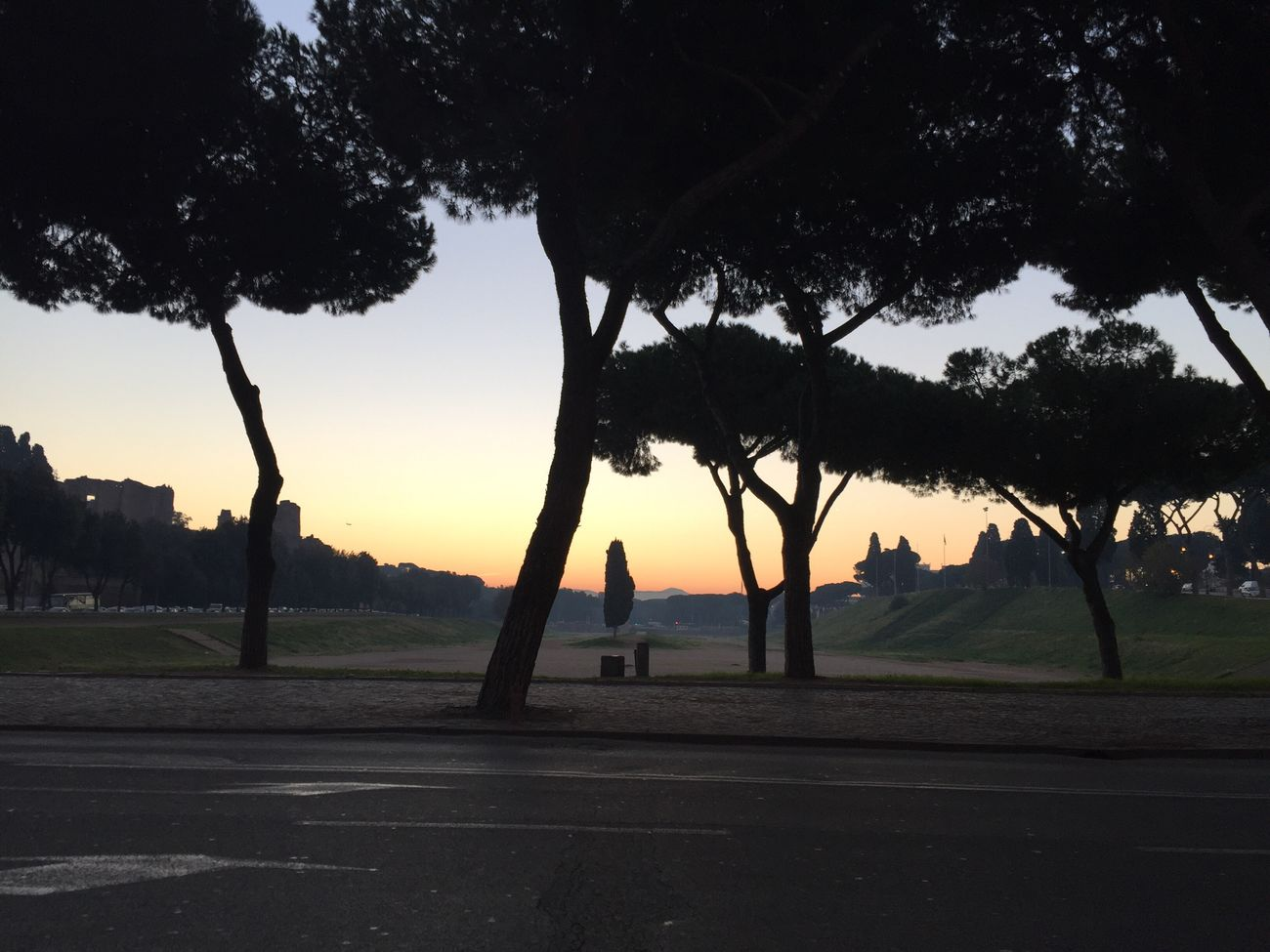 Buongiorno!!! Tree Sky Silhouette Sunrise Beauty In Nature Day IPhoneography Taking Photos Photographing Walking Around
