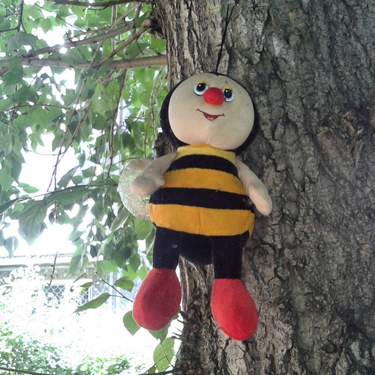 Относительно органично выглядит на дереве пчела. Но тоже ппц... омск сибирь пчела прибили к дереву садизм Bee Nail to tree Sadism Crusified