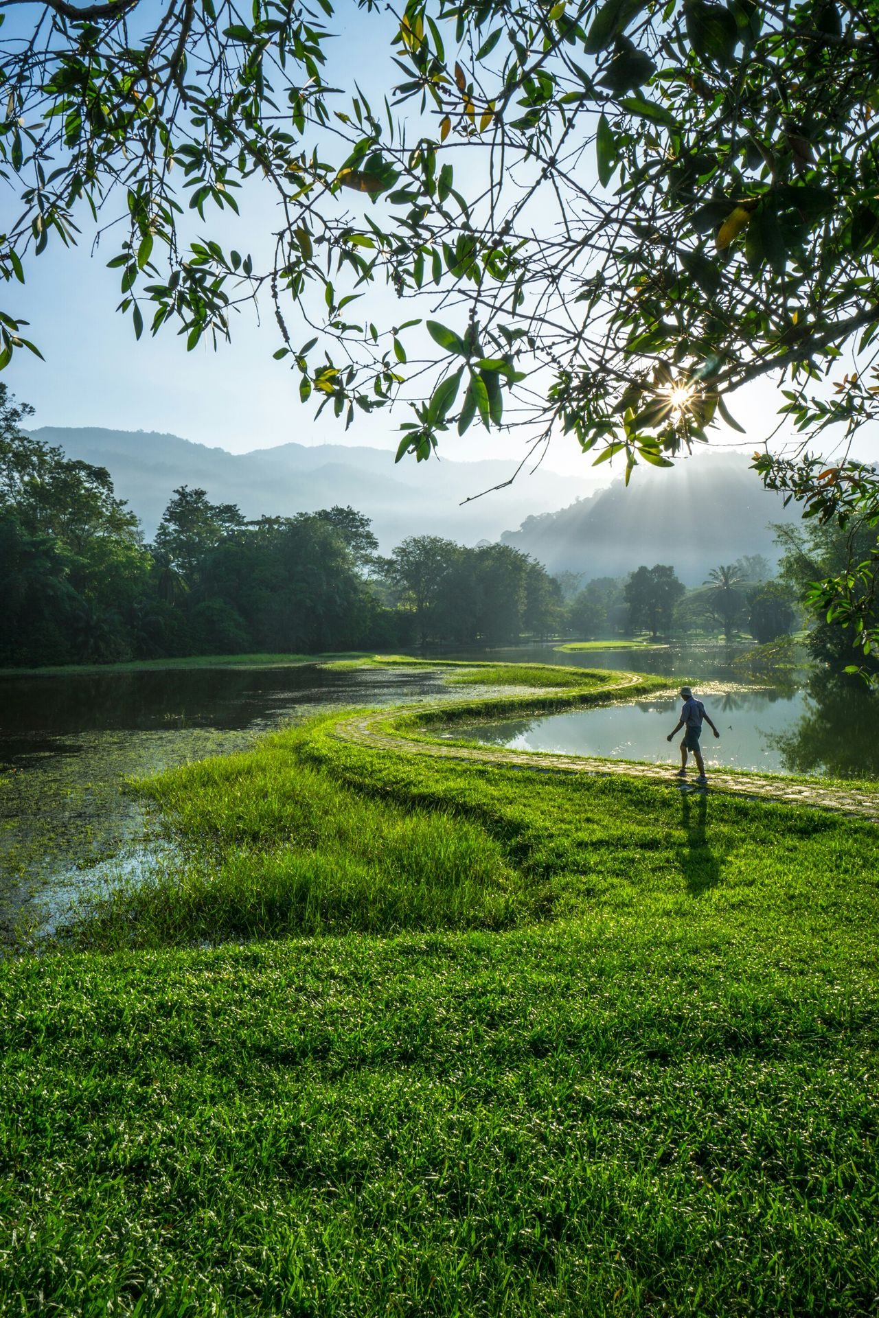 My journey begin Taking Photos Walking Tasik Taiping Taiping Perfect View Perak Malaysia Tamantasiktaiping Relaxing Light And Shadow Feel The Journey Hidden Gems  Color Of Life