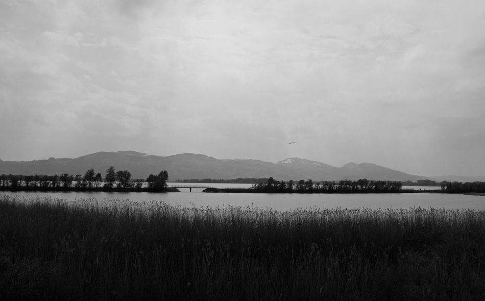 Black And White Lake Landscape Monochrome Photography Mountain Mountain Range Nature Outdoors Scenics Tranquil Scene Water