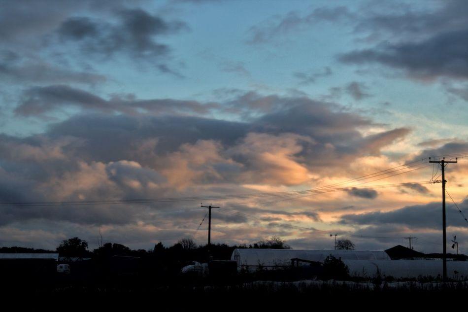 Golden into blue. Golden Hour Blue Hour Sky Clouds Silhouette Open Farmland Woodcote Surrey