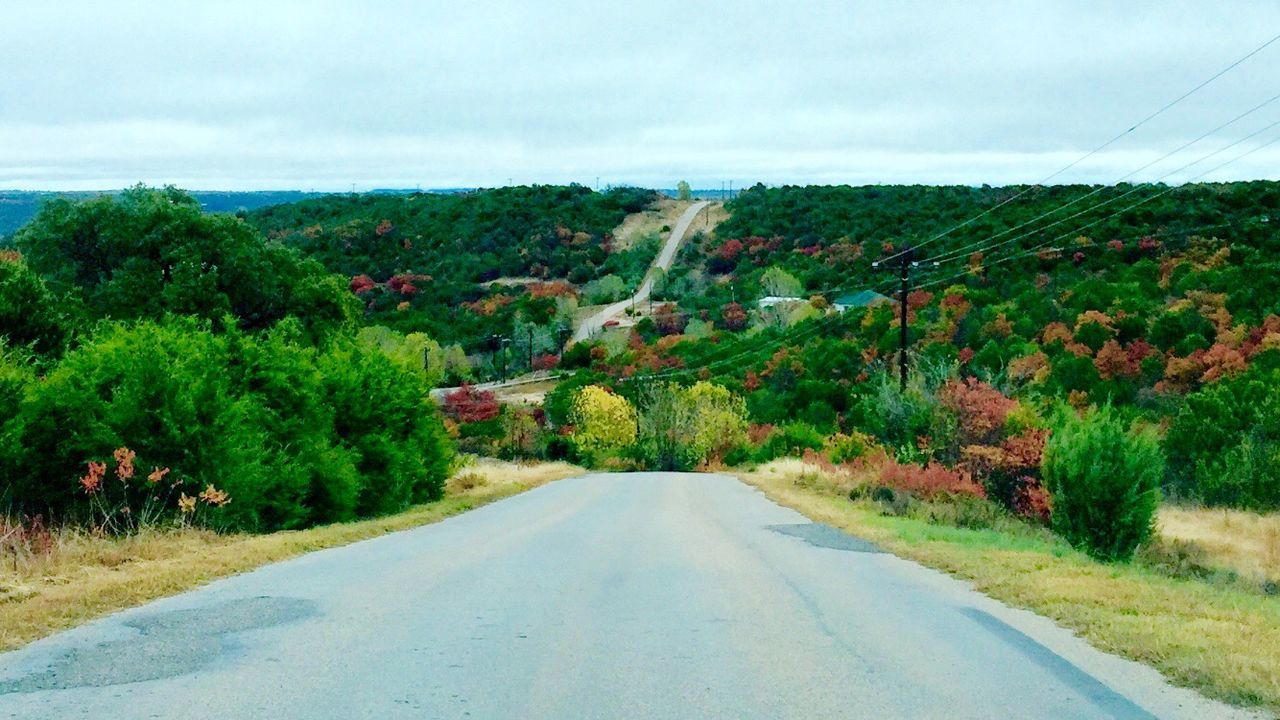 Texas Hill Country road on a cloudy day.