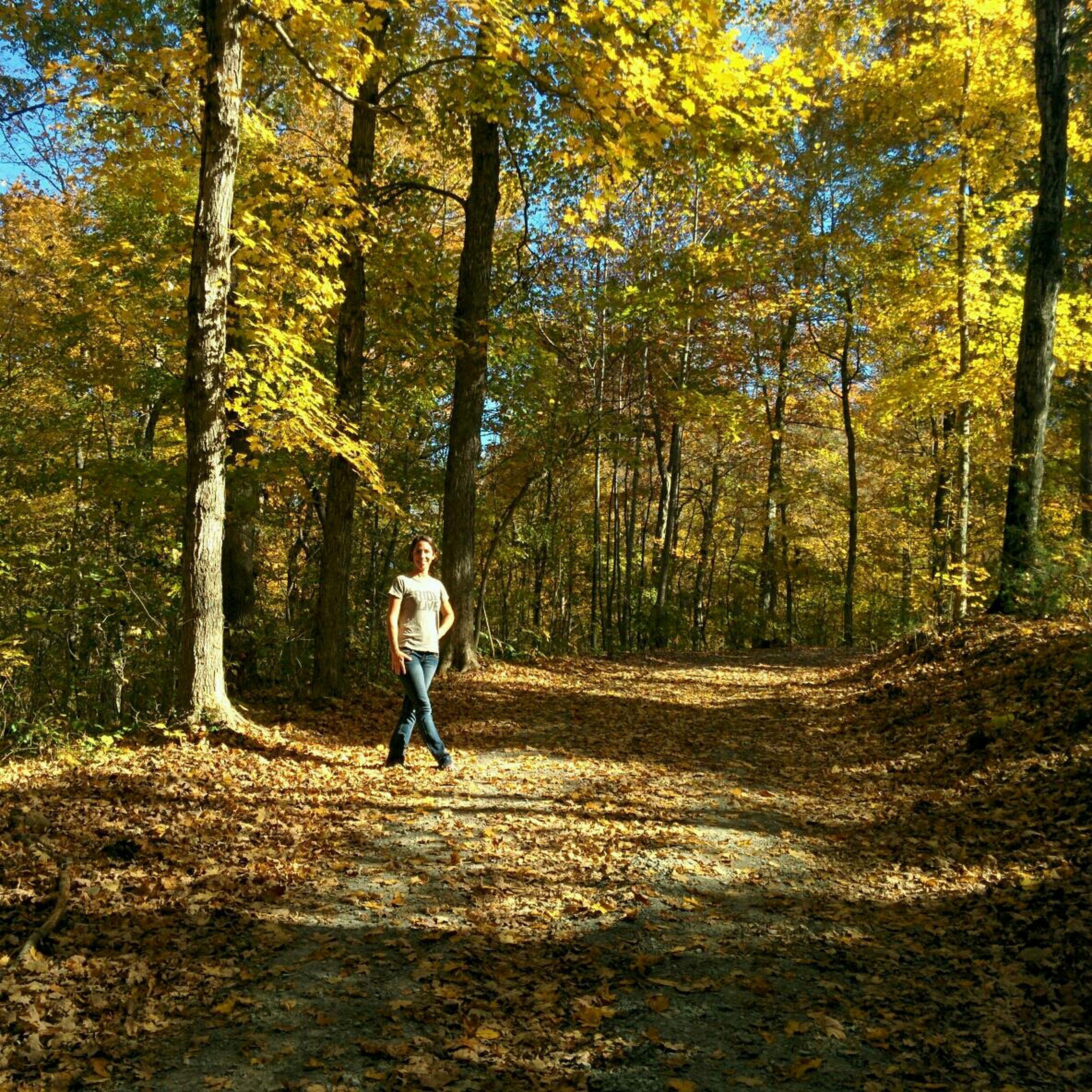 The EyeEm Facebook Cover Challenge Autumn Colors autumn First Eyeem Photo