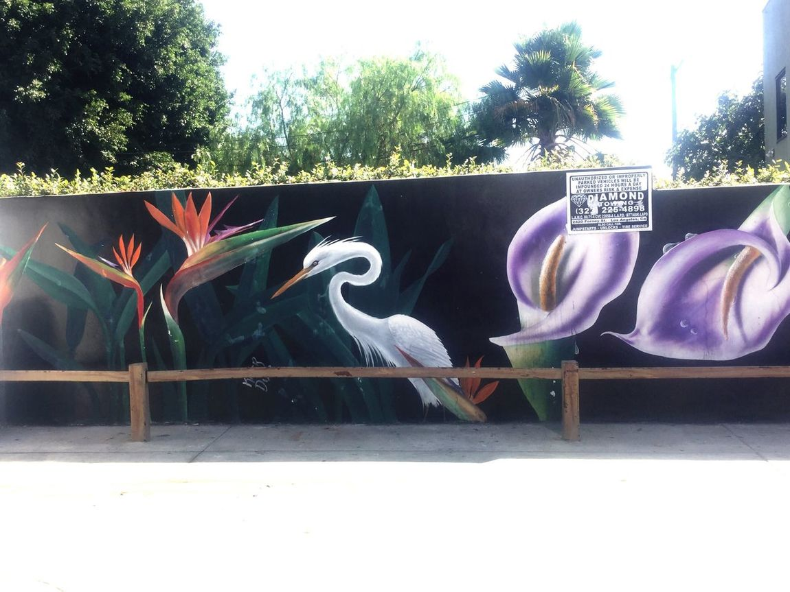 Creativity Day Sunlight No People Outdoors Built Structure Building Exterior Multi Colored Tree Architecture Mural Crane Losangeles Birds Of Paradise