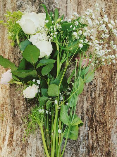 Flowers Bouquet Roses Babiesbreath Babysbreathflower Wood - Material Log Beautiful Green Botanical Vertical No People