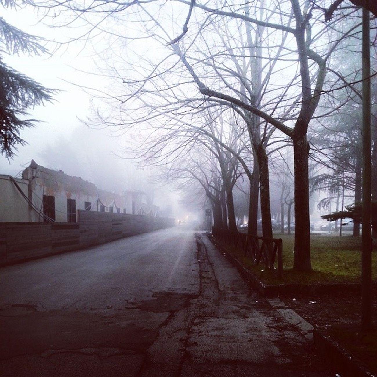 Giornata Bellissima per Tornare a Scuola -.- nothappy fuck nebbia odiosa comingback school :(