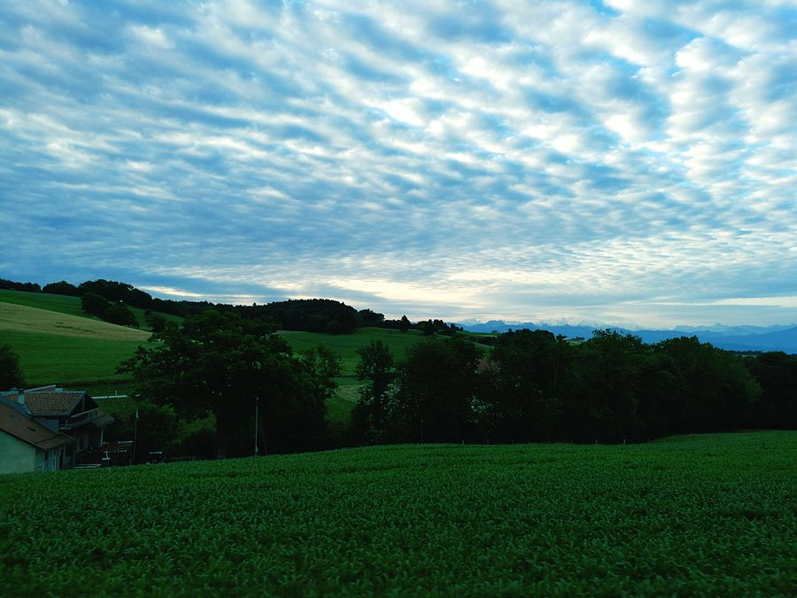 Mackerel Clouds Switzerland Marchissy Morning Sky Greenfields Mountains