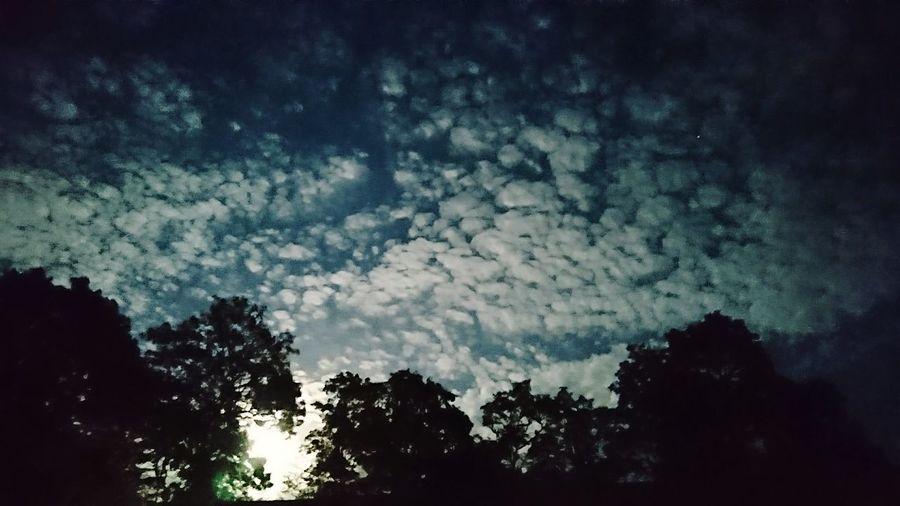 Night Sky Relaxing Friends