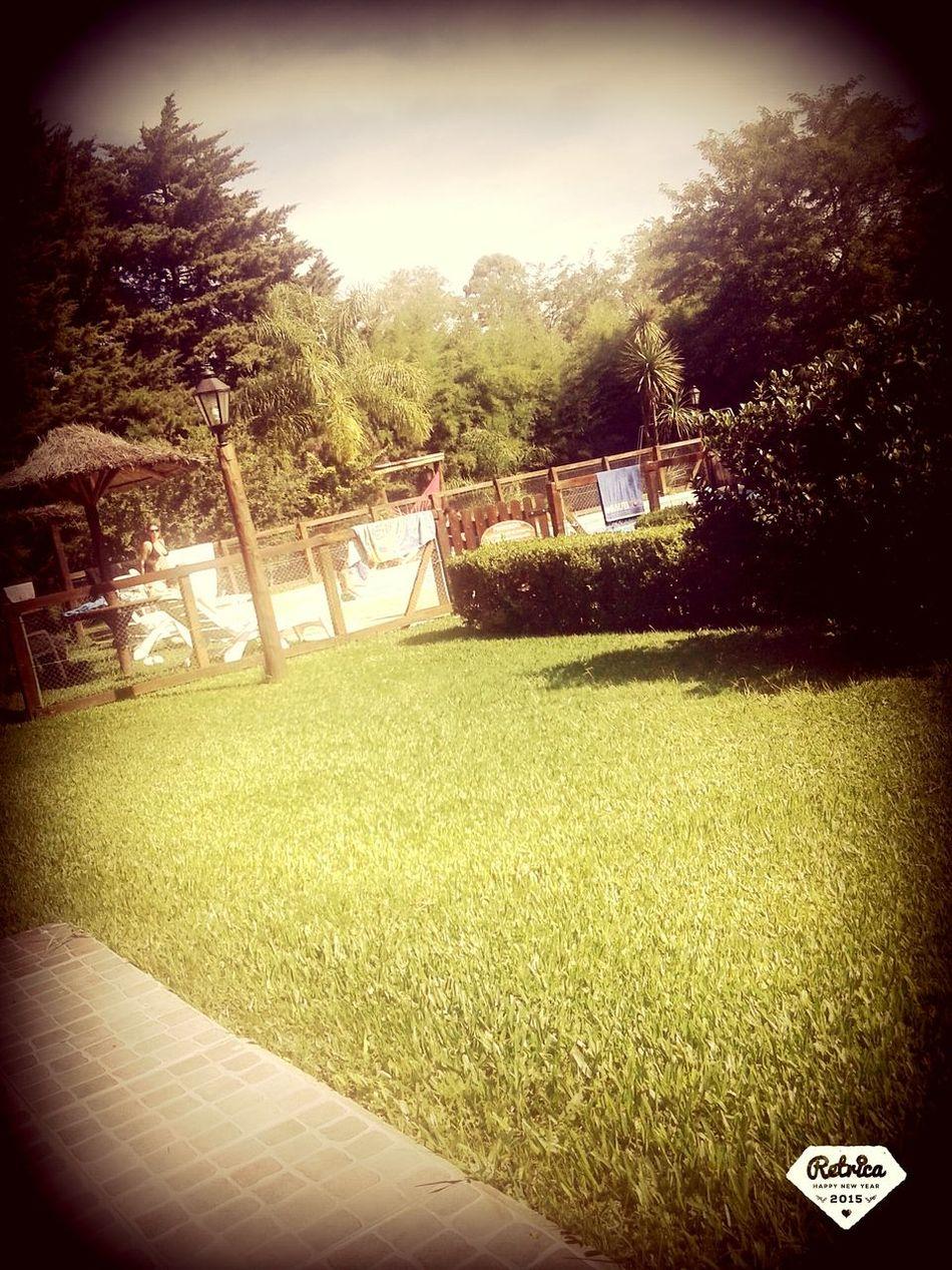 Fiesta Party Cumpleaños Brithday Baby Swimming Pool