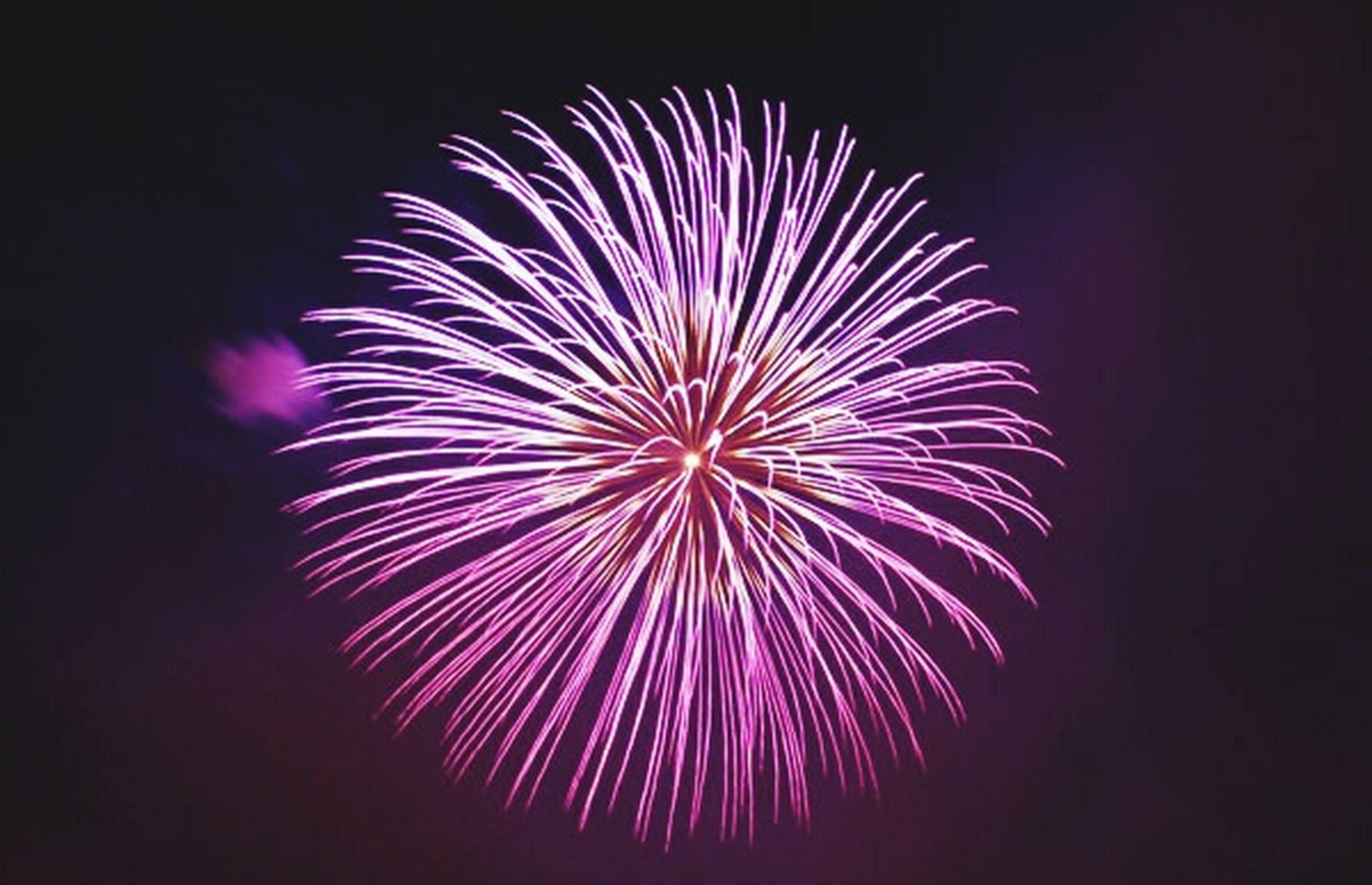 阿賀野川ござれや花火 ようやく見られた夏の風物詩