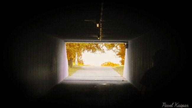 The Way Forward Indoors  Ceiling Tunnel Architecture Walkway Day Growth Footpath Diminishing Perspective Tranquility LongSpecial Effects People Light At The End Of The Tunnel Positive Positivevibrations Light At The End Of Tunnel Park Autumn Colors First Eyeem Photo Artphotography EyeEm Best Shots Eyeem Galery Photography Is My Escape From Reality!