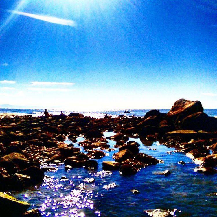On the rocks ....