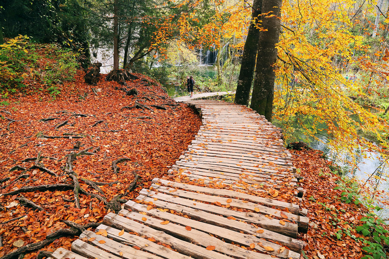 Mid Distance Of People Standing On Boardwalk At Plitvice Lakes National Park
