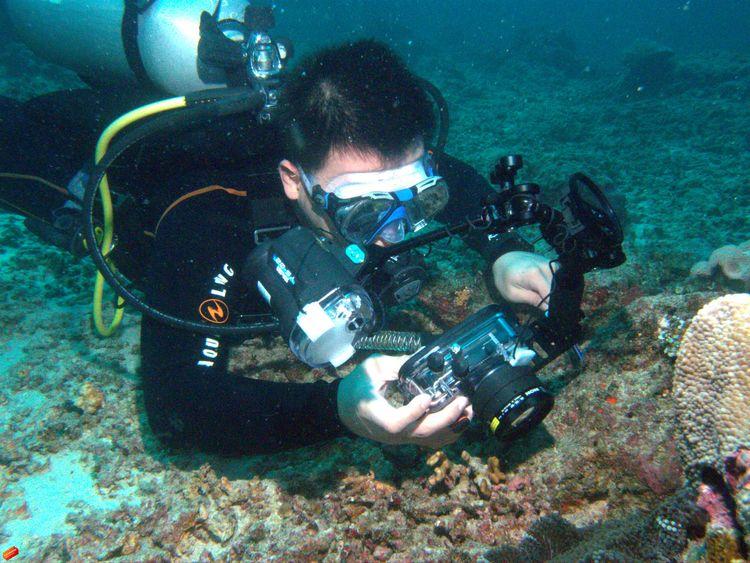 Sea Enjoying Life Taking Photos