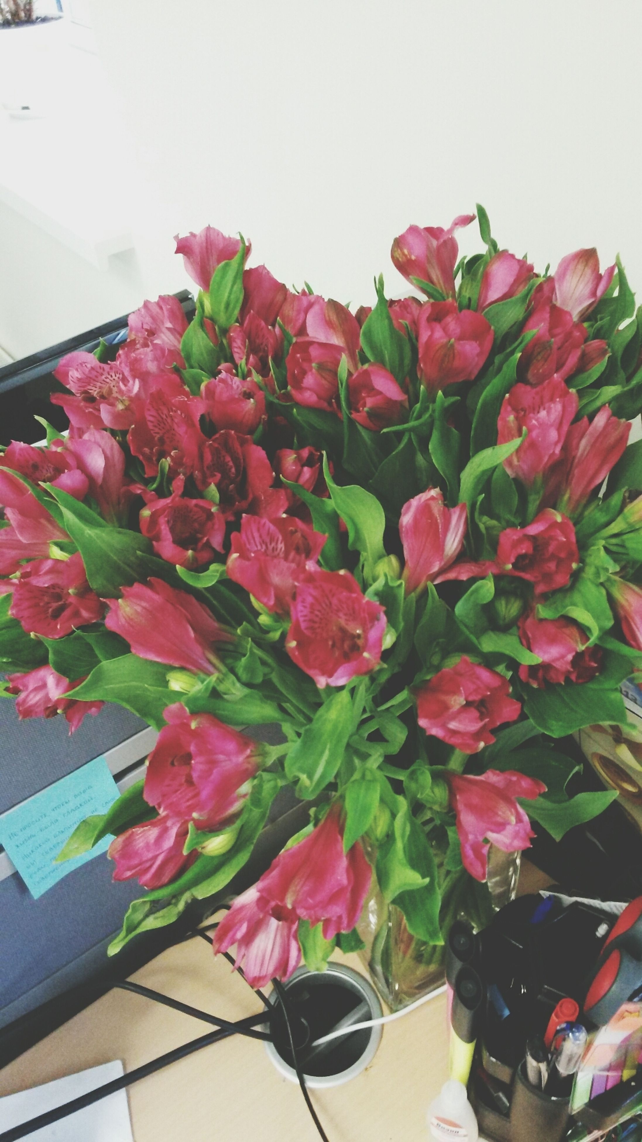 flower, fragility, petal, indoors, freshness, multi colored, pink color, bouquet, decoration, flower head, beauty in nature, copy space, variation, vase, potted plant, nature, wall - building feature, growth, clear sky, bunch of flowers