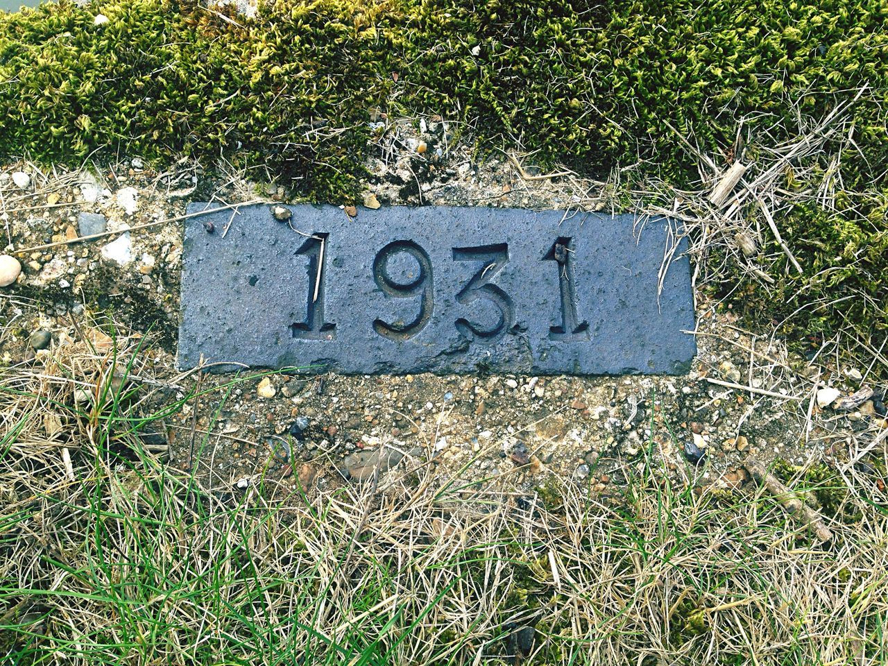The year 1931 Communication Text Grass Western Script Information Sign 1931 Field Close-up Weathered Geometric Shape Green Color Day Outdoors Grassy Overhead View Symbol Signboard Dirty Grassland