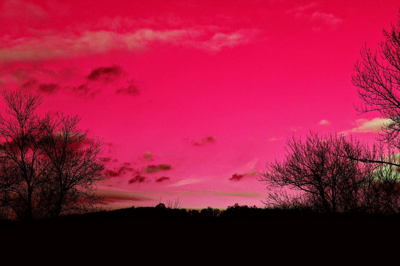 Showcase: February Sunset Sunrise Pink Sky Skyline Brookfield, Ct EyeEm Best Shots Trees And Sky Landscapes With WhiteWall