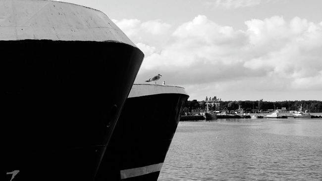 Nautical Vessel Transportation Water Mode Of Transport Sky Built Structure Architecture Cloud - Sky Sea Cloud River Waterfront Outdoors Cruise Ship Cloudy Black And White Ships⚓️⛵️🚢 Władysławowo Shipping  Architecture Ship Ocean Commercial Dock Day Journey