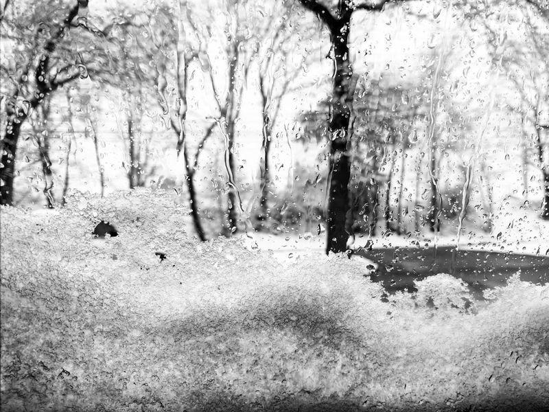 Life through a window Trees Nature No People Outdoors Sky Nexus6P Blackandwhite Window Snow Snow ❄ Raindrops
