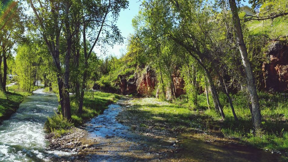 Along Spearfish Hiking Trail Trail Hiking Trail River View Stream Spearfish Creek Nature Outdoors❤