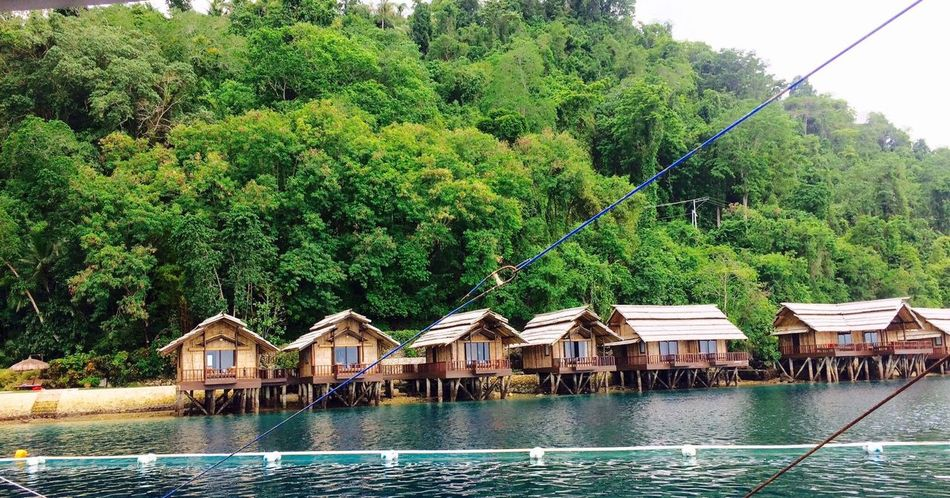 Travel Sky Travel Destinations Water Tree House Sea Scenics No People Nature Philippines