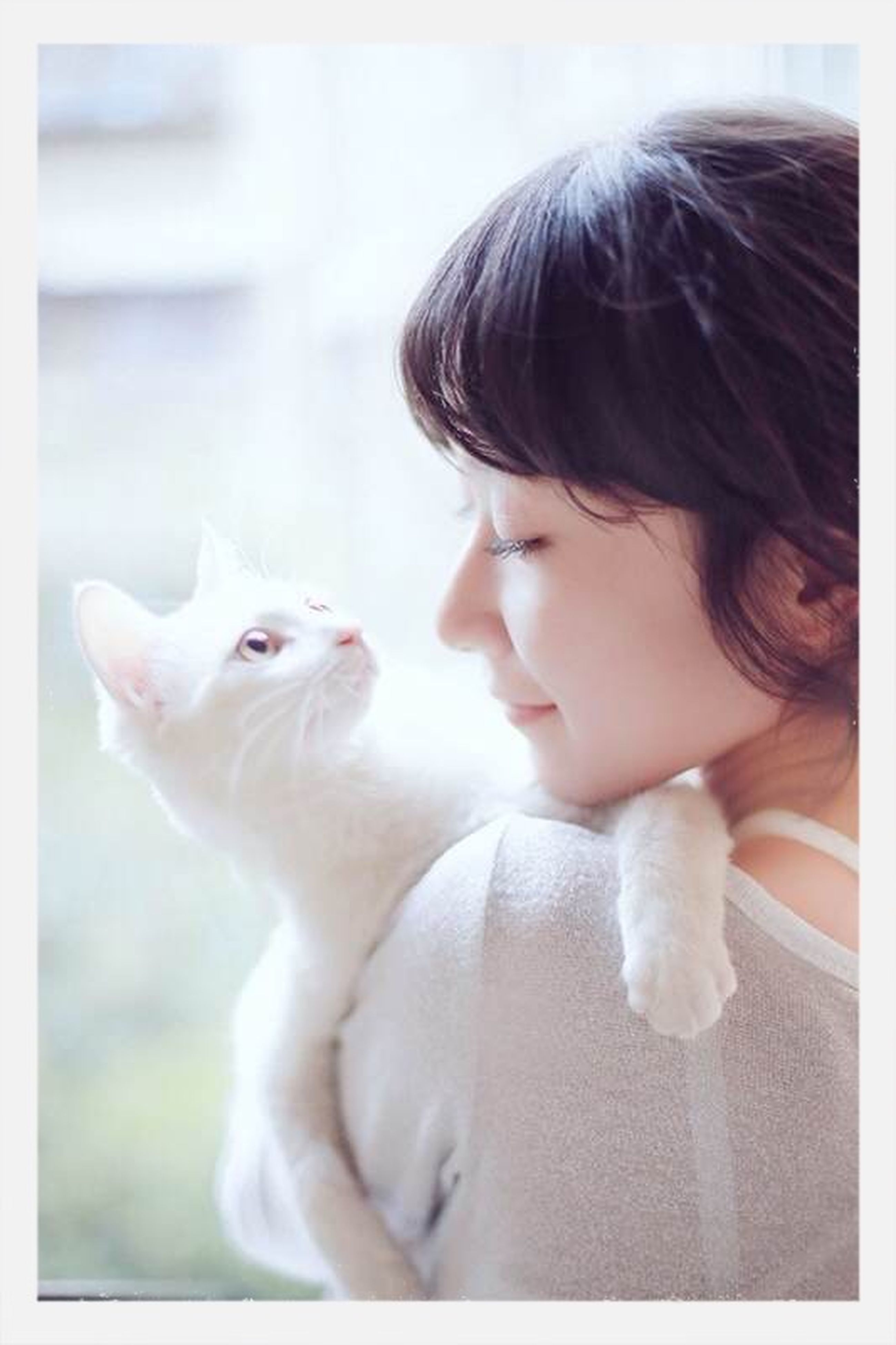 pets, domestic animals, indoors, animal themes, one animal, transfer print, person, auto post production filter, mammal, cute, childhood, domestic cat, looking away, portrait, home interior, innocence, lifestyles, elementary age