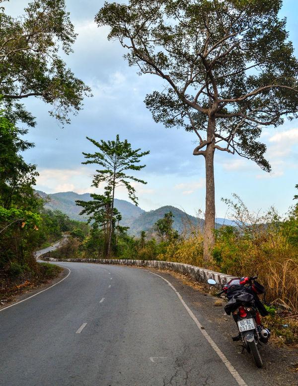 The road DaLatcity Dalat Nikon Beauty In Nature D7000 Day Honda Motorcycle Mountain No People Outdoors Road Sky Sonjewel Sonjewelphotographer The Way Forward Transportation Tree Wave Rsx