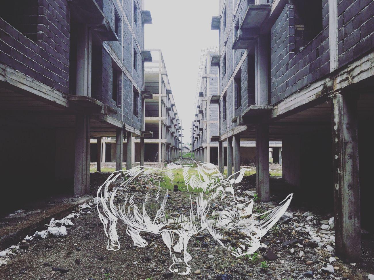 Digital Art Digital Painting Rhino Sketch Sketchbook Painting