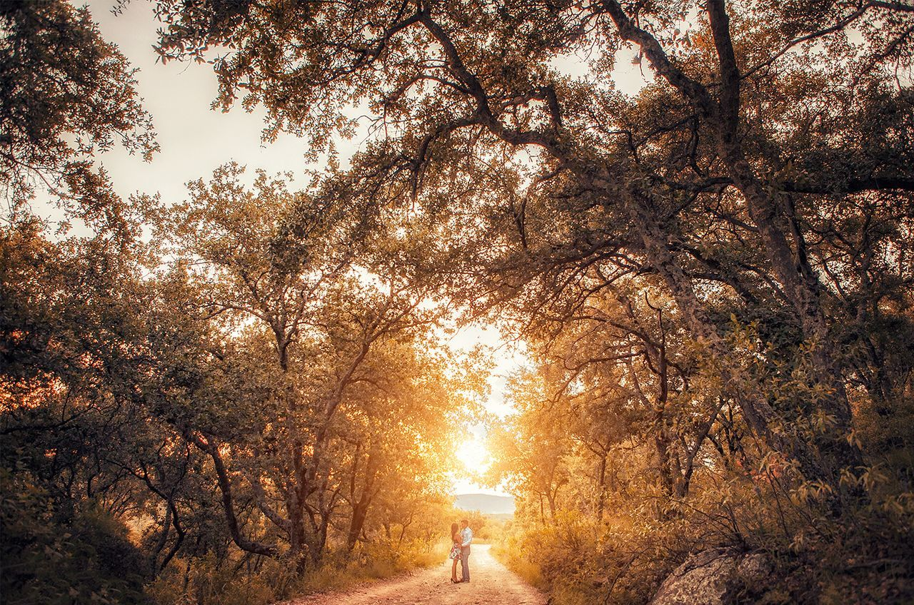 People Sunset Nature Beauty In Nature Scenics Tree Sun Heat - Temperature Sky Day Sunny Sunday Sunlight Moments Life In Colors Live, Love, Laugh Sunrise Men Women Simple Photography Beauty In Nature Tree Nature Landscape Love
