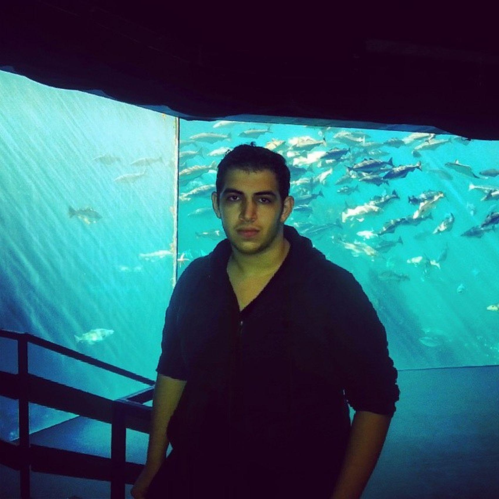زيارة Atlanterhavsparken