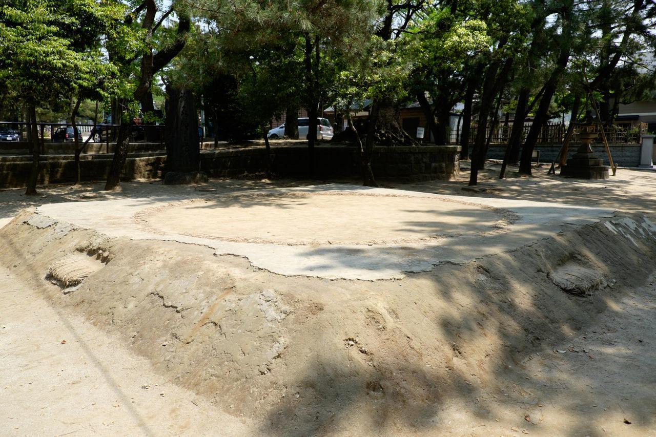 船橋大神宮境内の土俵 Fujifilm Fujifilm X-E2 Fujifilm_xseries Funabashi Japan Japan Photography Outdoors Shrine Sumo Tree 土俵 相撲 船橋 船橋大神宮