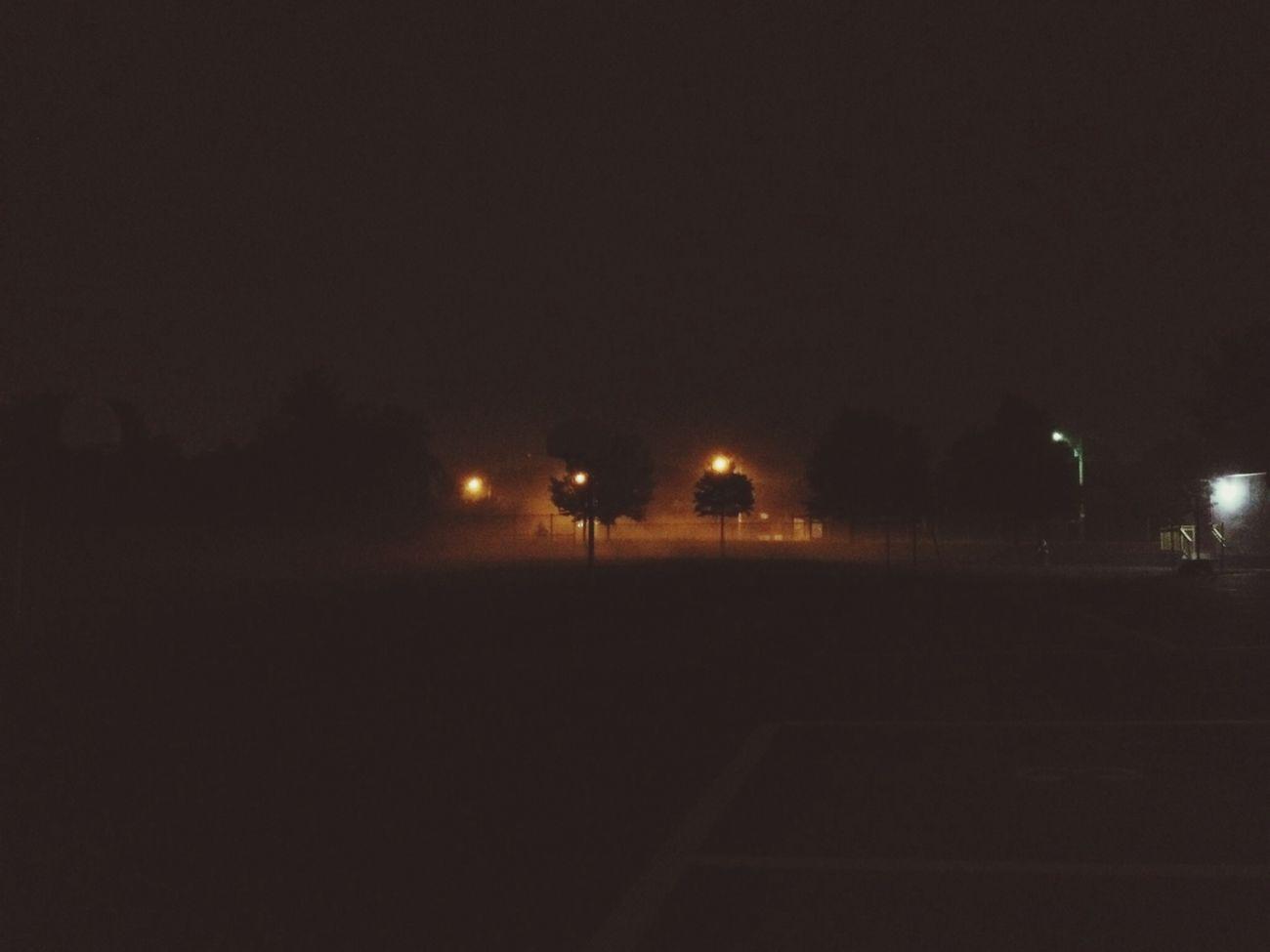 Foggy nights. Foggy Foggy Night Good Night Dog Walking