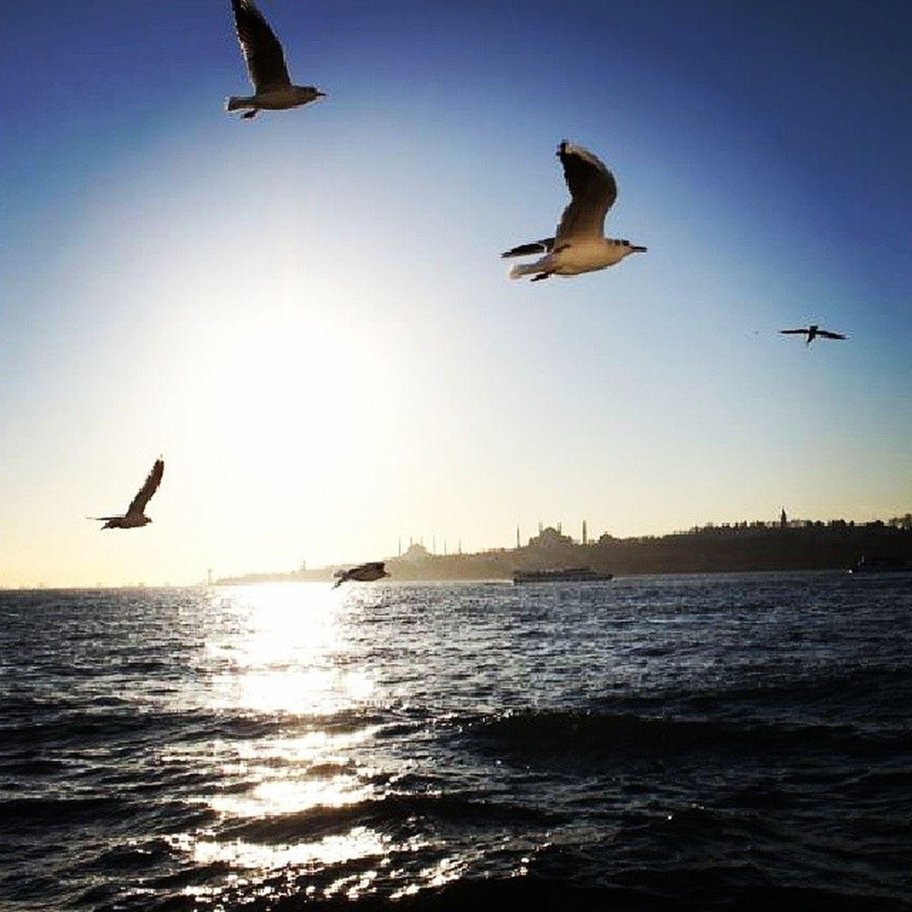 Turkey Istanbul Bosphorus Marmara sea sunset steamer