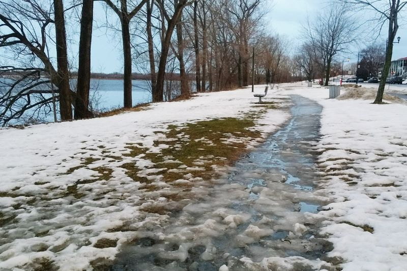 +8°C In Montreal In Mid January. Talk About Global Warming. Globalwarming Snow Melting Warm Slush Bicycle Path