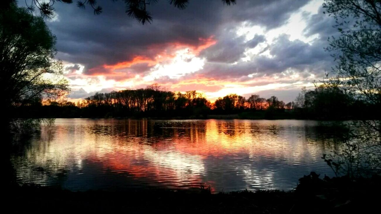 Sunset bonanza Lake Lake View Lake Shore Trees Nature Photography Nature Sunset Sunset And Clouds  Braunschweig Brunswick Water Reflections